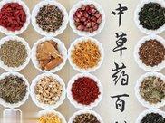 秋季养生 ,常吃4种食物,排毒清肠,刮油消脂,美容养颜