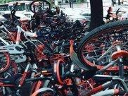 现在共享经济这么火, 特别是共享单车, 他们靠什么盈利呢?