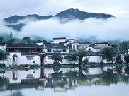 少林寺|千年古银杏美到窒息 吸引众多摄影师打卡