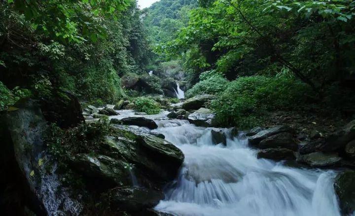 红茶沟森林公园图片