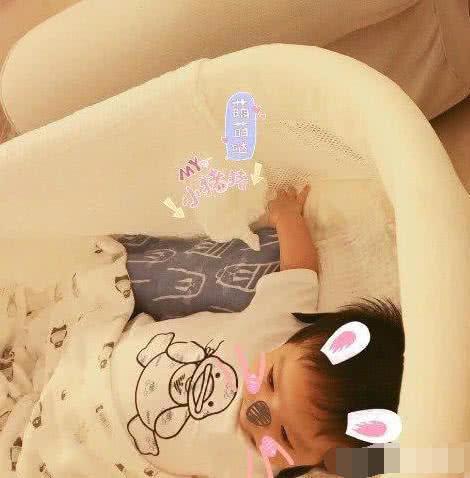 小燕子李晟晒表情正面照,搭配宝宝搞笑老公橘黄表情包猫图片