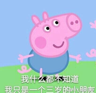 小猪佩奇动画片图片大全_小猪佩一奇动画片第一季