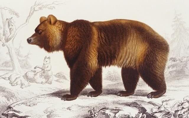 十种近代已灭绝的动物