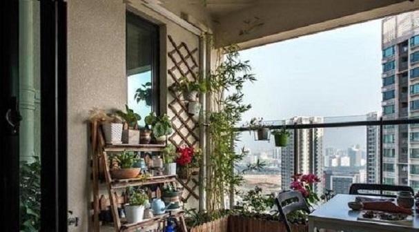 家里盆栽太多怎样放?让这3款花架赞助你,室内整洁更美不雅