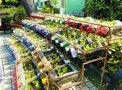 小区生活垃圾主动破袋率达95%