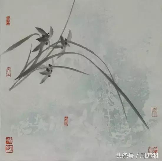 本篇幅就兰花的叶和花的画法作了阐述,下篇针对花,叶组合来讲解.
