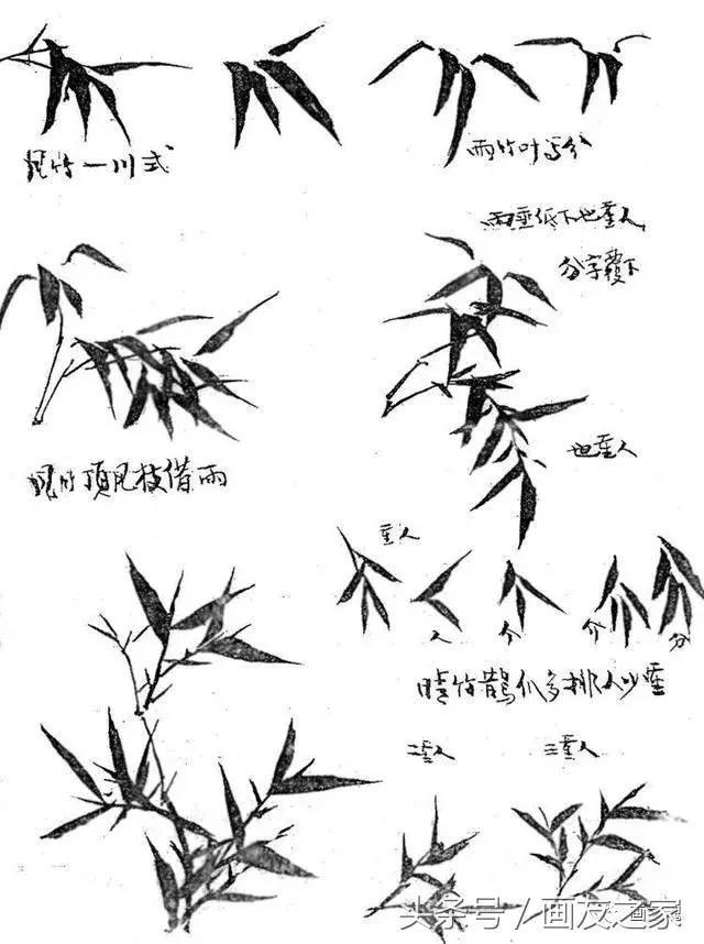 竹子的写意画法图文教程,分分钟成为国画大师!
