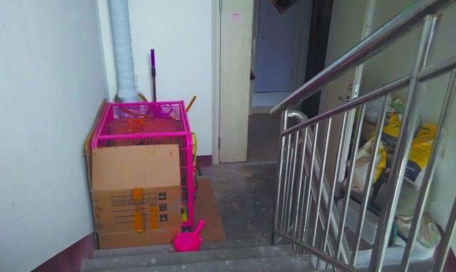 案例物业未经业主同意清理占用楼道鞋柜,合理