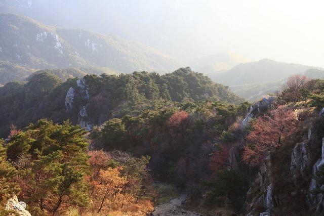 四川首批省级风景名胜区之一蒙顶山