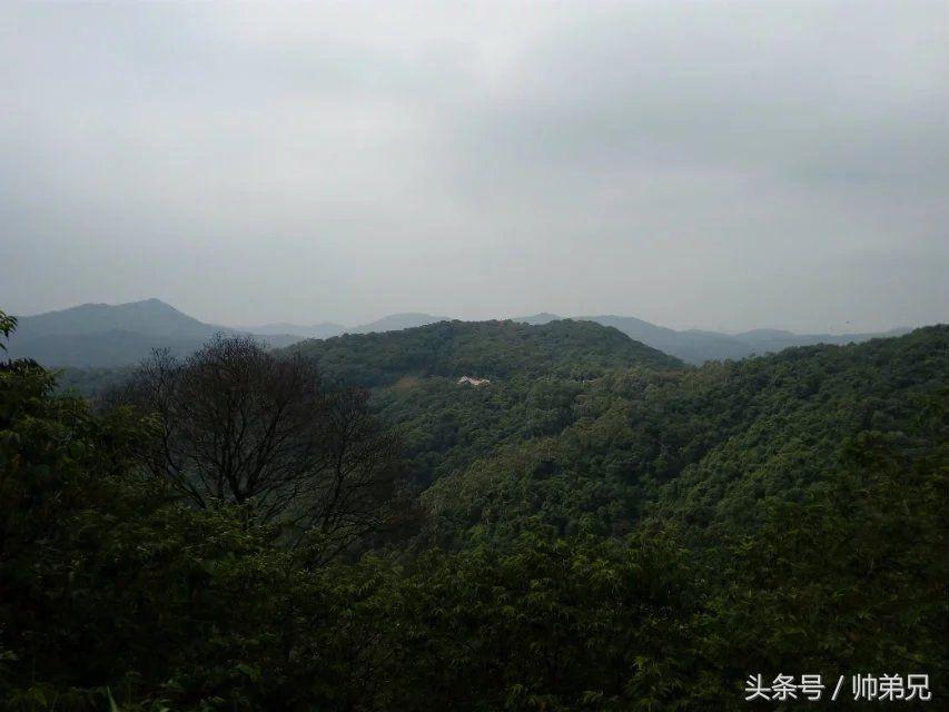 广州牵牛谷与天鹿湖森林公园