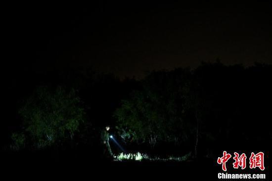 美墨边境地带戒备森严 巡逻人员打手电搜寻非法移民