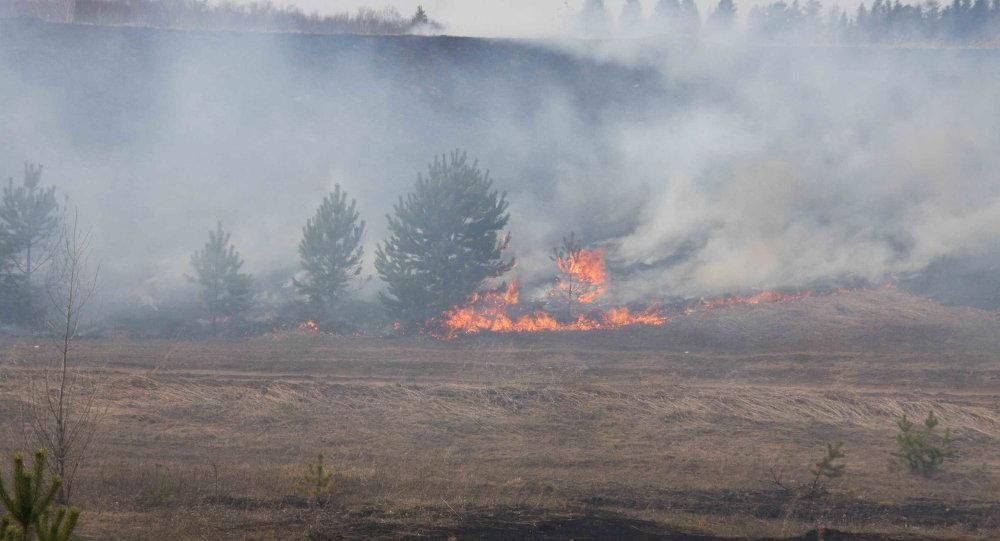 国际 正文  虽然说森林火灾燃烧的烟雾和气溶胶对于人体的危害并不是