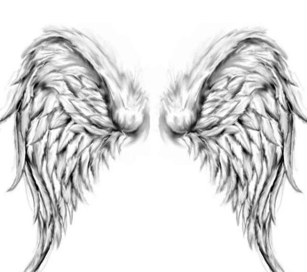 十二星座专属梦幻翅膀,水瓶座冰蓝羽翼,双鱼座美的移不开眼!