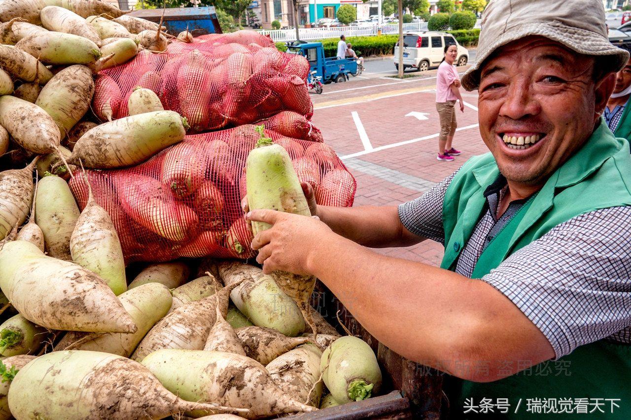 饭店购买5万斤滞销萝卜 免费发给市民
