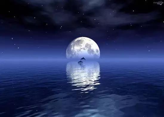 千古诗词赋,望月最相思