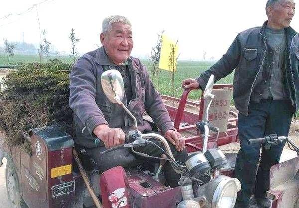 """农村这几年有""""3个坑"""", 每个都让人束手无策, 农民得做好准备!"""