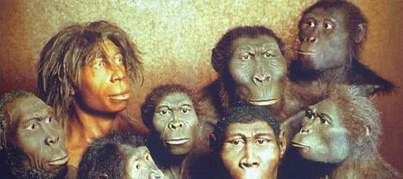 为什么上亿年的恐龙没有产生文明,两百万年的人类却产生了文明?