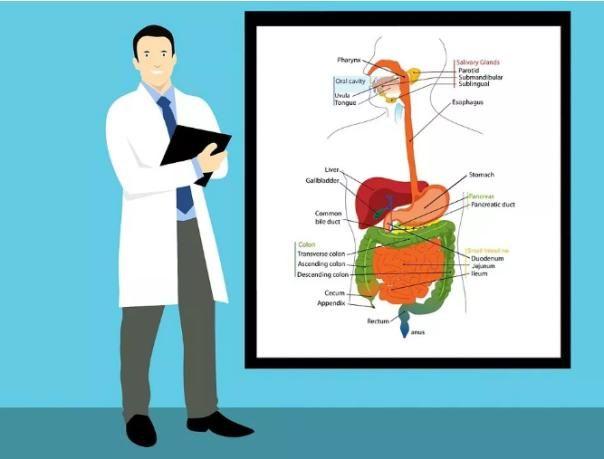 近日,世界癌症领域两大权威机构——世界癌症研究基金会(WCRF)和美国癌症研究所(AICR)发布了一份有关癌症预防的最新报告。这份报告对数十年来有关癌症的研究证据进行了总结,在饮食、营养、运动方面提出了十大建议,堪称是迄今为止最全面的生活方式防癌建议。 这份报告显示,超重或肥胖至少导致12种癌症,比十年前WCRF的报告结果多出5种。[这12种癌症是:肝癌、卵巢癌、前列腺(晚期)癌,胃(贲门)癌,口腔和喉癌(口腔、咽、喉)、肠癌(结直肠)、乳腺癌(绝经后)、胆囊癌、肾癌、食管癌(食管