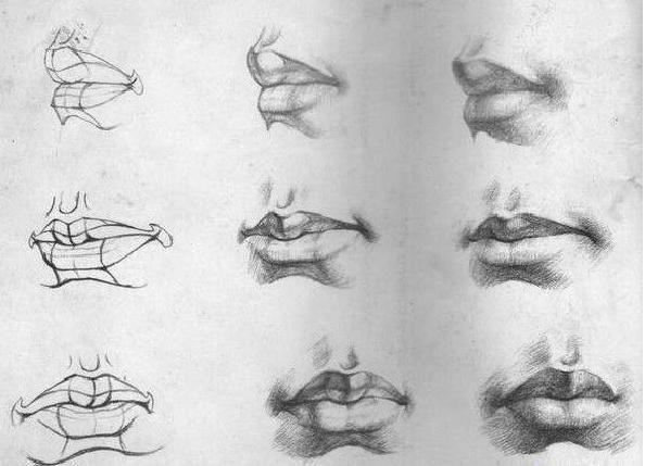 嘴巴的画法