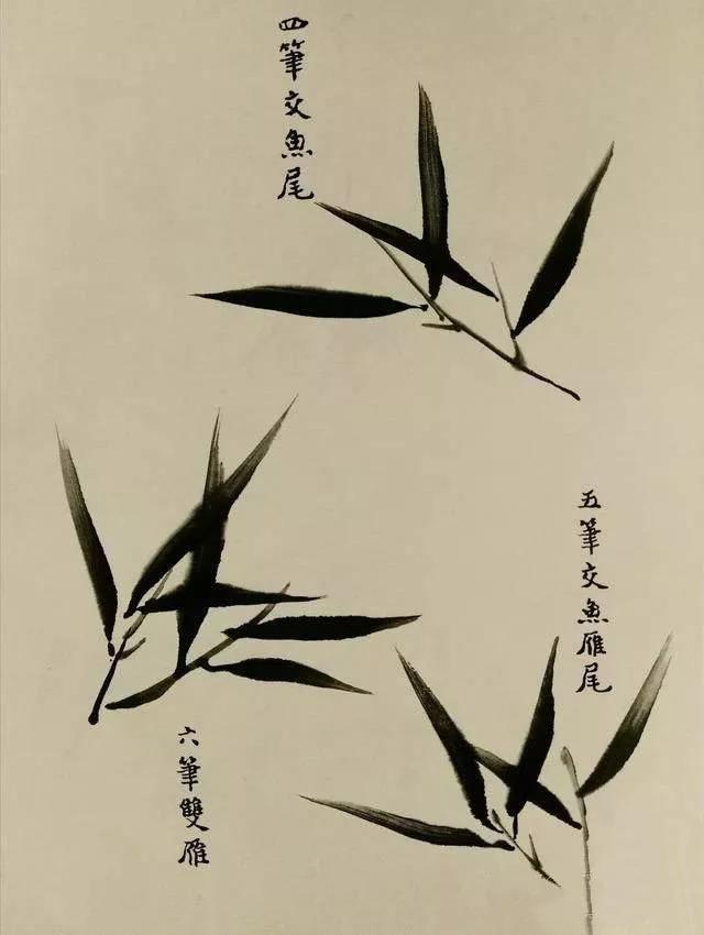 逸心教学国画写意竹子的画法解析