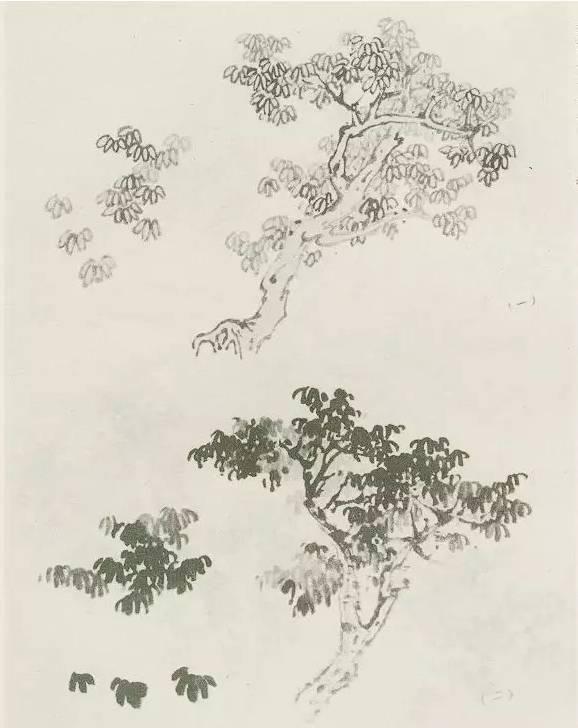山水画的树大都取材于乔木、灌木和藤蔓植物, 尤以乔木为多。 林木是山川的衣装,它覆盖着山峦, 给大自然予生机,众山交会,点丛树以为深。 细路斜穿,缀荒林而自远。  山水以树始,画树以树干为先。 树木的造型,无外是树干的高低、出入、曲址、倚扶之状。 画树木,要有攒攒聚疏散,以浓阴深浅分其远近,大处着眼,小处着手,把握其组织结构,运用各种笔墨技法来表现。 画树,必须到自然中去,仔细观察,认真研究树木的基本生长规律和特点。 对一棵树,从不同角度进行写生,对树木形成深刻的理解,为山水打下坚实的基础。 一、树的组成