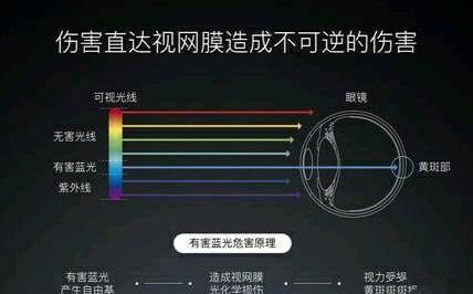 LCD、LED和OLED屏相比,哪种更伤眼睛?不知道的看看吧ag88