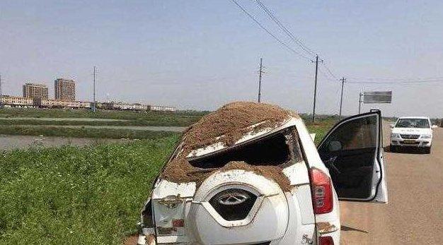 奇瑞瑞虎3遭遇砂土车,车主逃过一劫,网友:换别的车早就完了!