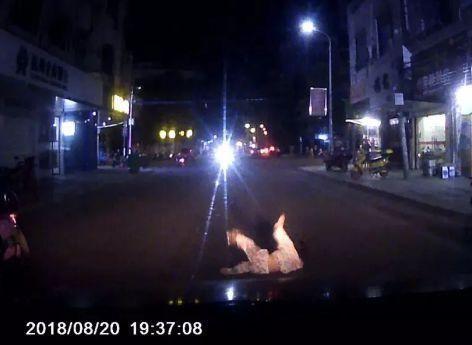 抚州女孩惨遭车辆碾压,只因为这样过马路?这回不是闯红灯!