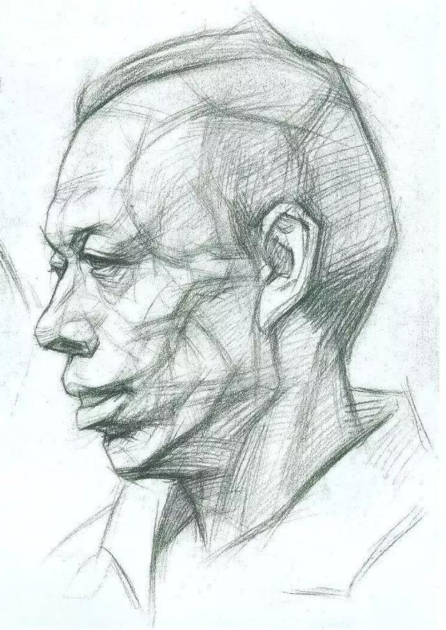 眼睛等结构,这些结构在画素描的时候是必不可少的,了解头部(正面,侧面