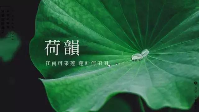 论绘制设计,中文字体排版设计是厉害的天正轴网排版教程上开图片
