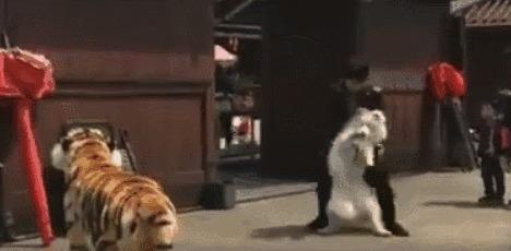 搞笑gif图片图:动态第一次知道自己的眉毛小孩猫咪大全表情可爱的高清包图片