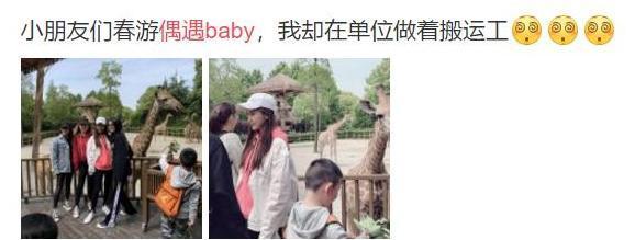 网友动物园偶遇Baby,她看小海绵的眼神让一切绯闻不攻自破
