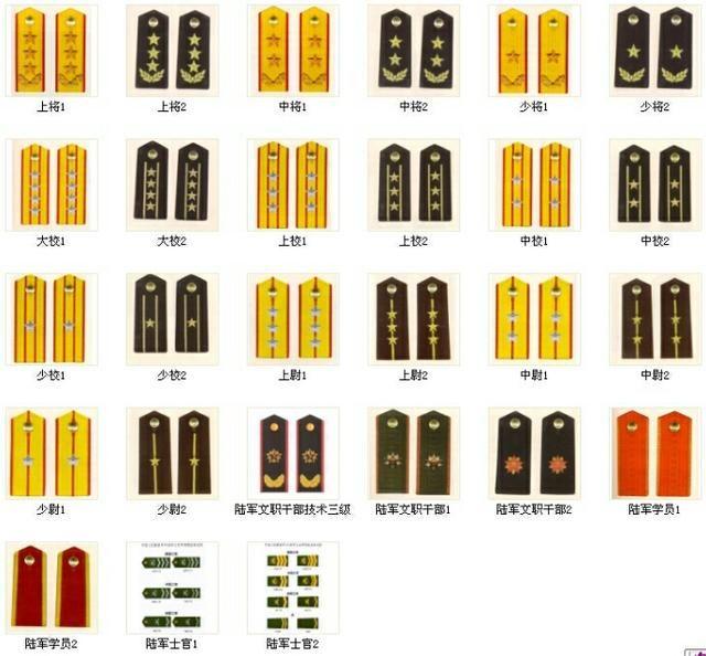 中国军队所有的军衔是什么图片