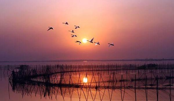 中国十大淡水湖排行榜,你对中国是十大淡水湖都了解多少?