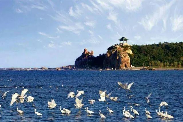 旅游 正文  秦皇岛滨海大道是从秦皇岛市海港区到北戴河海滨旅游区的