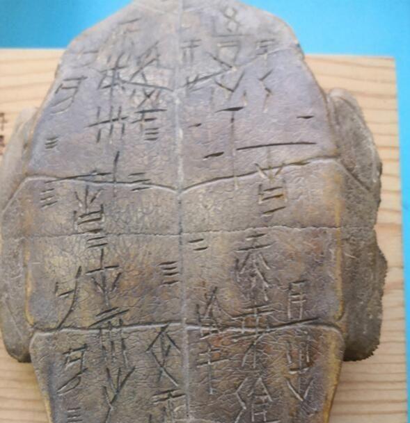 隆安右江奇怪了一块龟甲,上面刻满出土文字,专rosi情趣马尾和服双图片