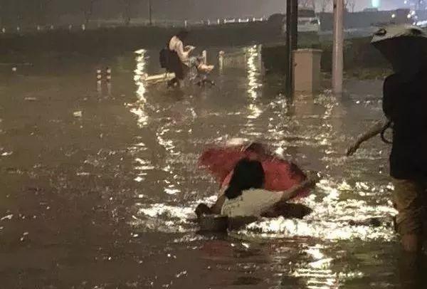 遇到一条大河横亘于前,这时如果有一头斑马成功蹚水过去,其余就会随之