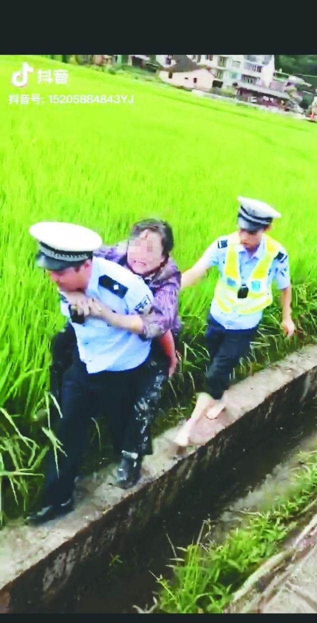 一辆奥迪连人带车冲入稻田 执勤交警小心背出八旬伤者