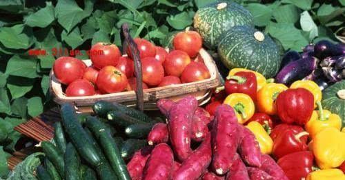 十字花科蔬菜有多厉害?菜心补钙、红菜薹抗衰老、西兰花最受欢迎