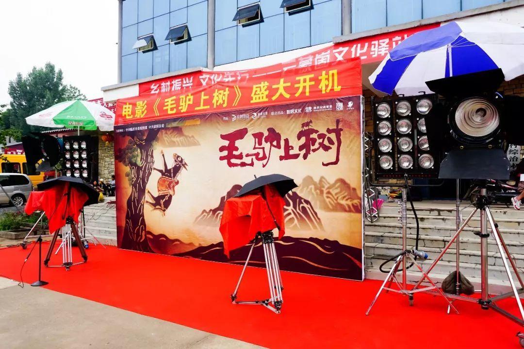电影《毛驴上树》在山东临沂岱崮举办开机发布会 山东电影开机