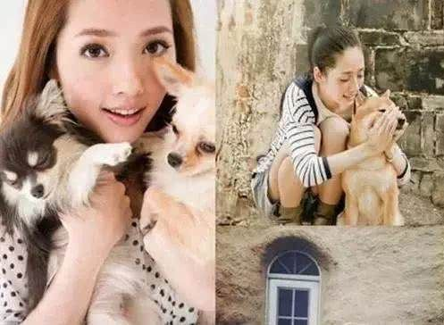 娱乐圈爱养宠物的明星,霍思燕养了9只,而她家成小型动物园!