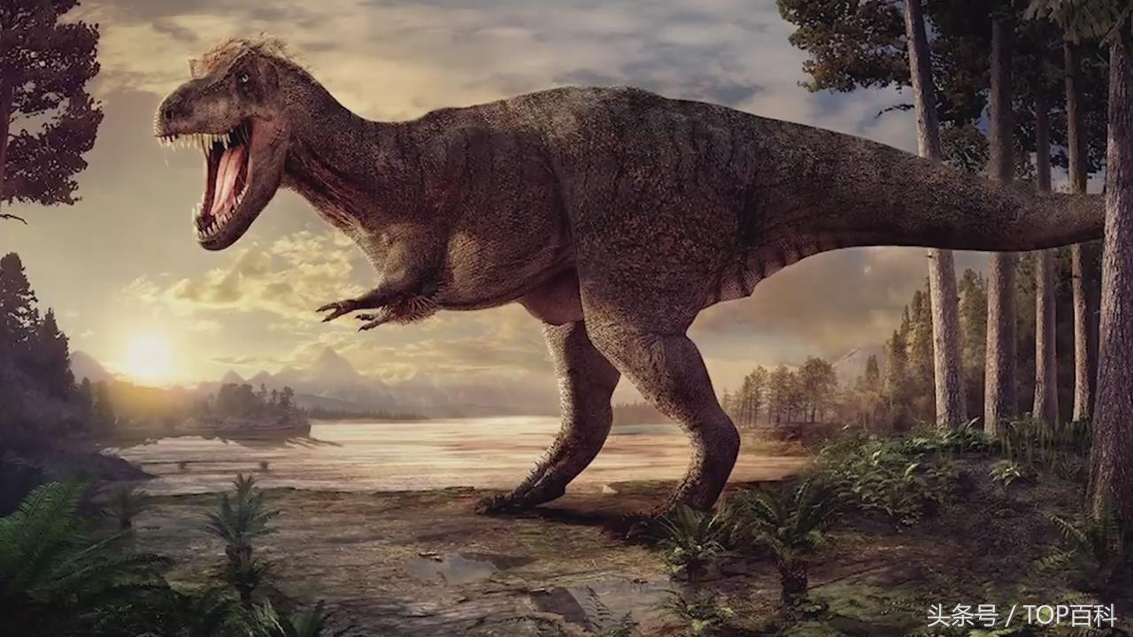 地球上已经灭绝的5个史前动物,有些比恐龙还早,庞大到